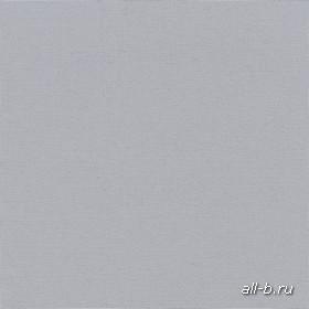 Рулонные шторы:ОМЕГА серый